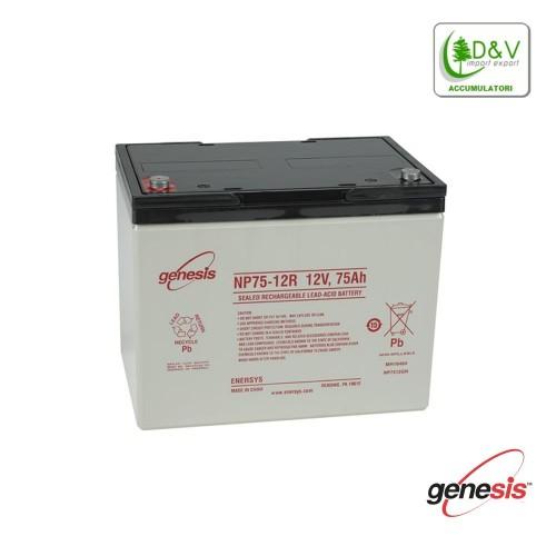 Batteria Genesis 12V 75Ah
